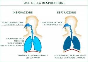 http://www.psicologopotenza.it/wp-content/uploads/2019/04/Dott.ssa-Sanza-Nadia-Respirazione-psicologopotenza.it_-300x211.jpg